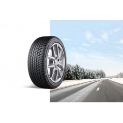 DRIVEGUARD  (hiver)/ Véhicule de tourisme roulage à plat