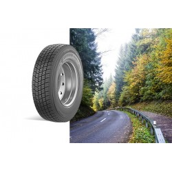 Kormoran Roads 2D